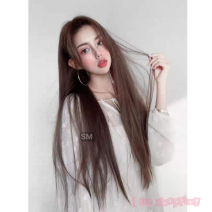 Lady Wig Long Straight Brown Color Hair